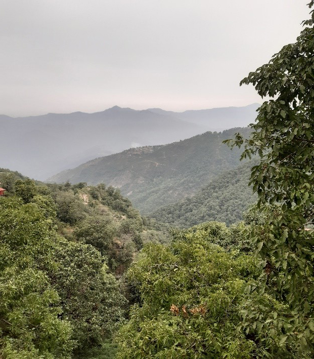 View from Flag Hill at the Jabarkhet Wildlife Reserve in Mussoorie